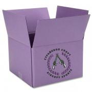 Коробка шаров Mad Bull 0,25 MATCH GRADE (4000 шт) 20 пачек